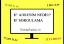 IP Adresim Nedir? IP Sorgulama Aracı